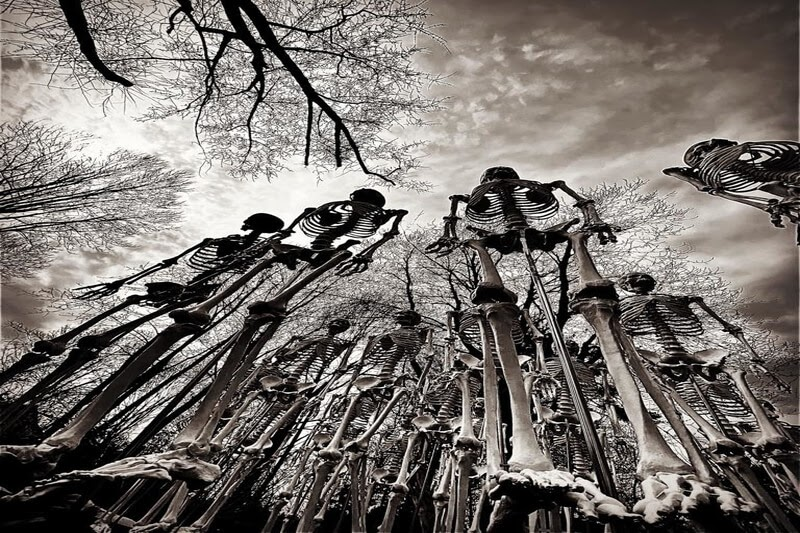 Haunted Overload haunted house in New Hampshire creepy skeleton army